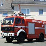 TLF24/48 (7)