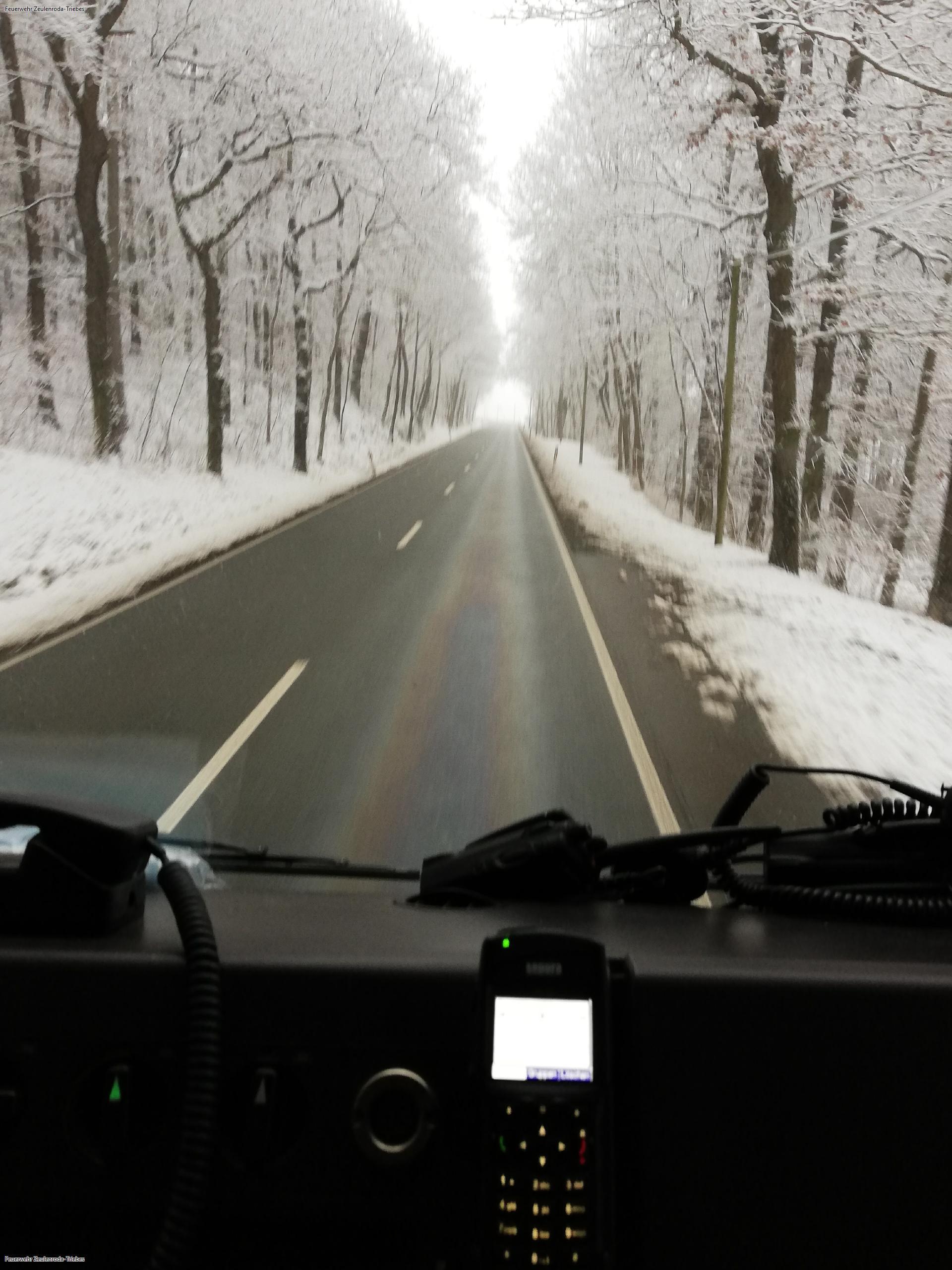 Feuerwehren waren von Zeulenroda bis Greiz unterwegs zur Beseitigung